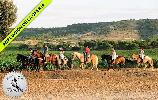 Disfruta de un agradable paseo a caballo