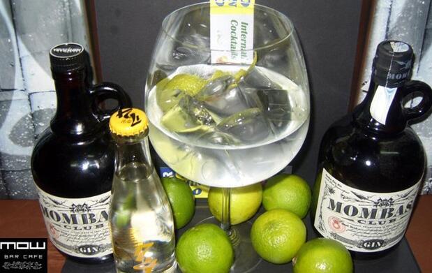 Prueba dos copas del mejor Gin Tonic