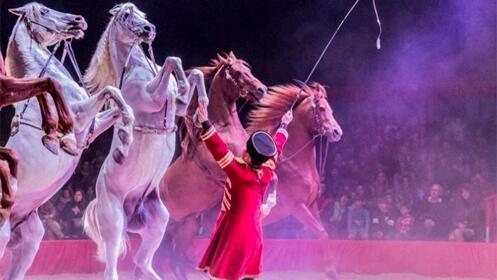 Entradas para el Gran Circo Mundial 18 septiembre. En palco, Butaca VIP