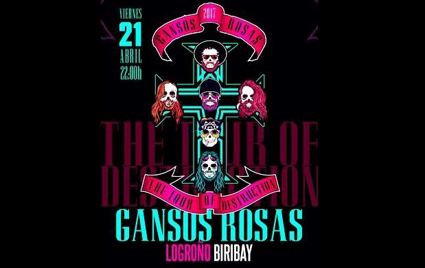 Gansos Rosas en Logroño