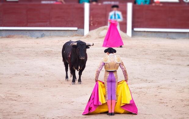 Entrada de Toros 30 de Agosto, Calahorra