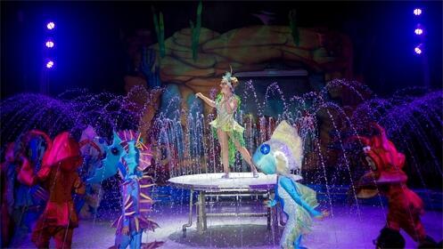 Entrada para 'Aqua Circus' con Circo Alegría en Logroño