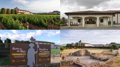 Visita y cata en Bodegas Corral, en Navarrete