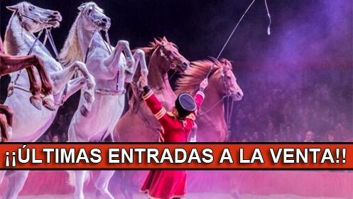 Entradas para el Gran Circo Mundial 19 septiembre. En palco, Butaca VIP