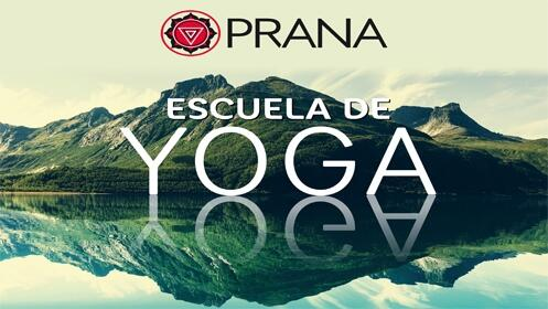 10 sesiones de yoga ¡Relaja tu cuerpo y mente!