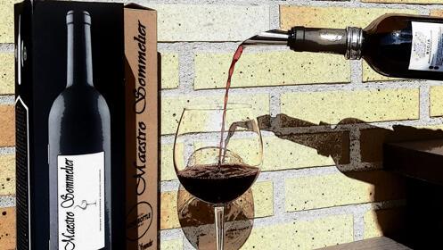 Estuche de Vino en forma de botella (5 Piezas)